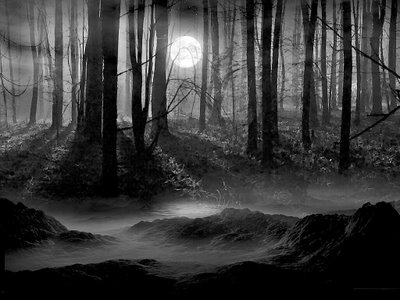 El increible caso de la pérdida del móvil maligno en mitad de la noche, en un bosque y sin cobertura y su posterior aparición